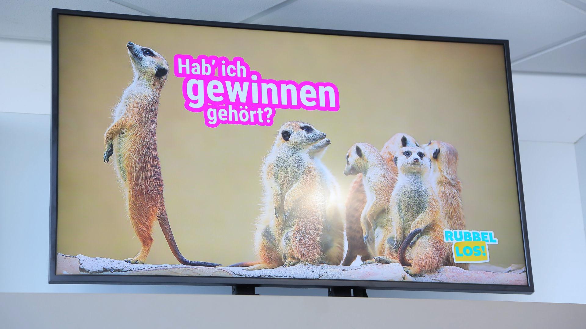 Werbescreen3 c OELG web