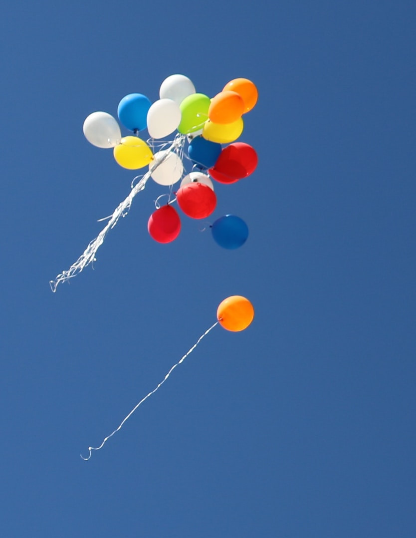 This image shows balloons flying in the sky.